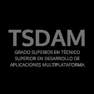 TSDAM